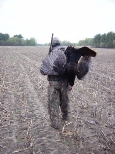 Wild Turkey Hunting
