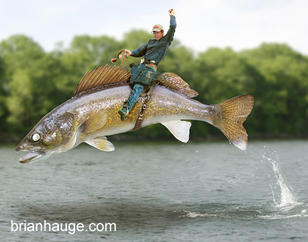 Filed under Featured Content   FishingWalleye Pictures